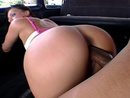 Anaya, The Downtown Girl Bang Bus