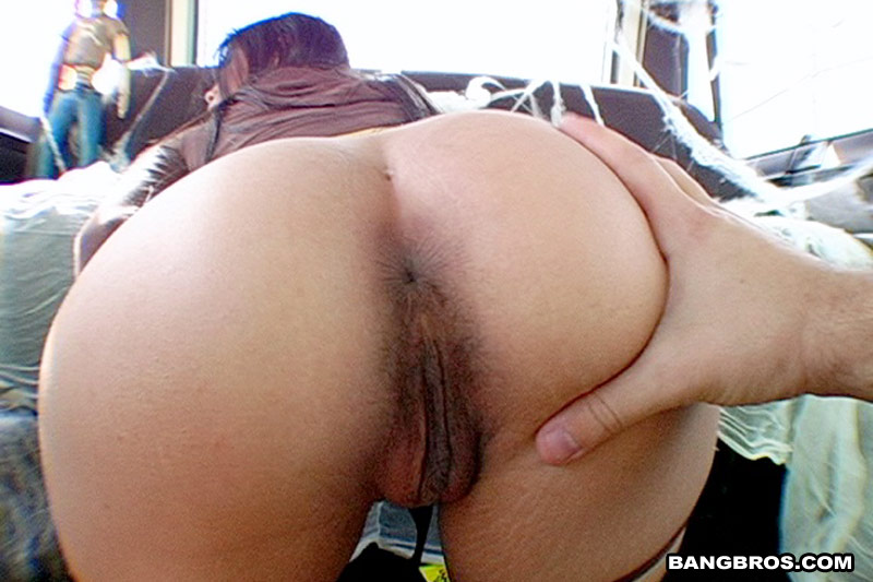 bangbus full videos