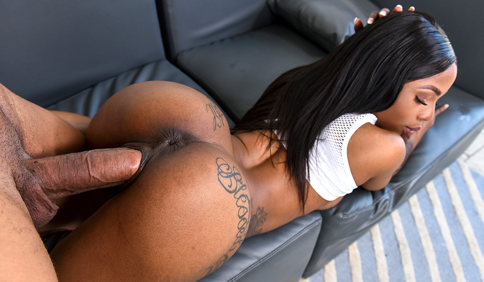 Ebony Bbw Getting Fucked